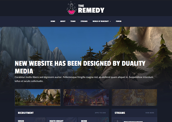 The Remedy guild website design preview